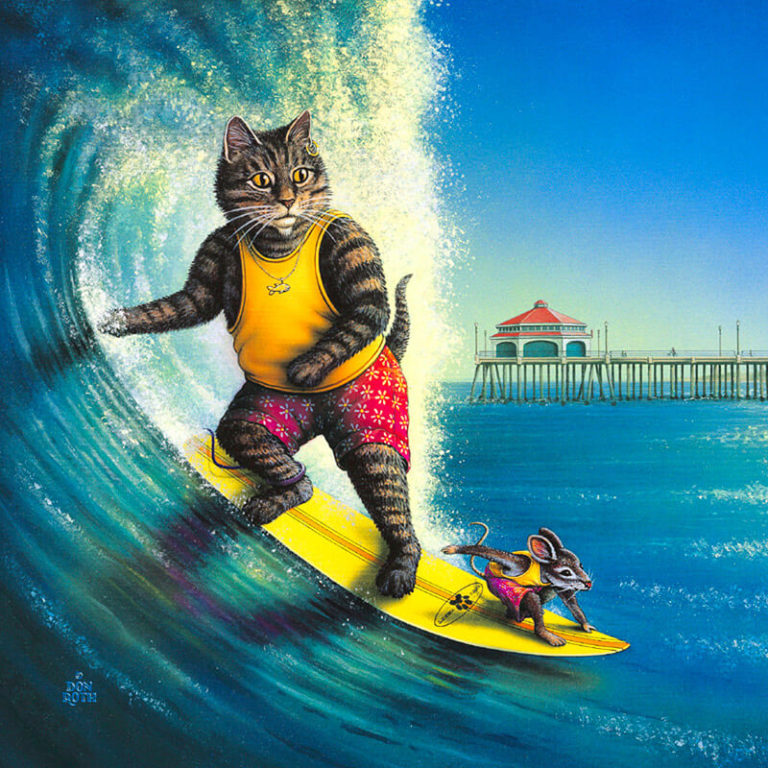 cat surfboarding