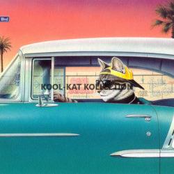 Kruiser-Kat