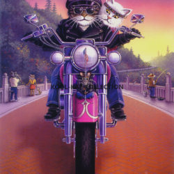 2 cats riding a motorcycle