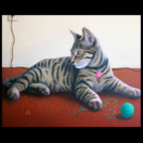 Kool-Kats Pet Portraits: Complete Original Pet Portrait